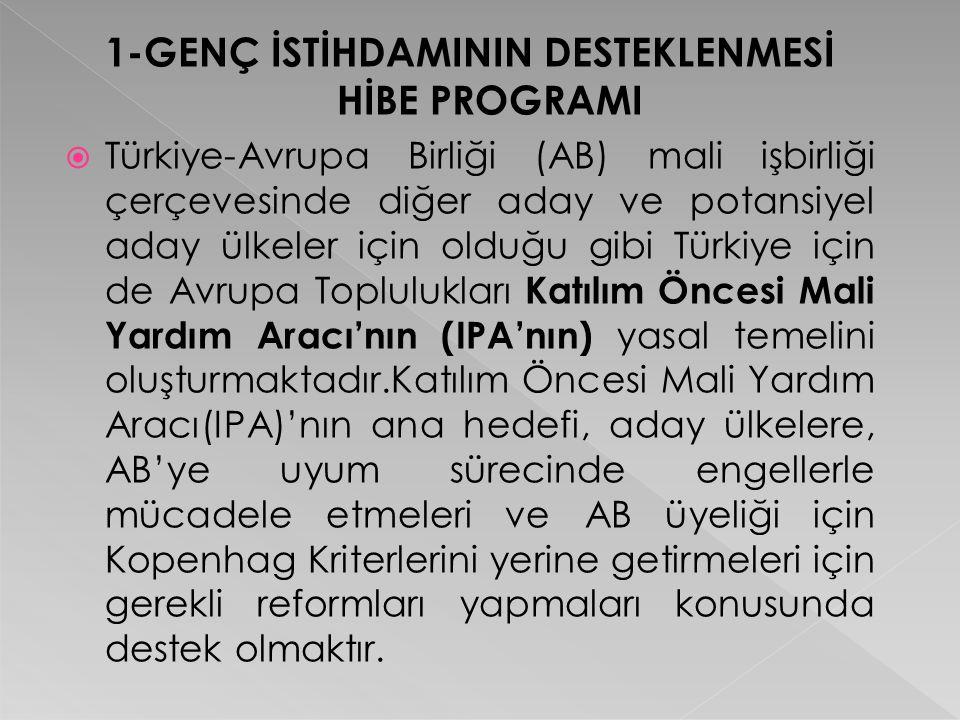 1-GENÇ İSTİHDAMININ DESTEKLENMESİ HİBE PROGRAMI  Türkiye-Avrupa Birliği (AB) mali işbirliği çerçevesinde diğer aday ve potansiyel aday ülkeler için o
