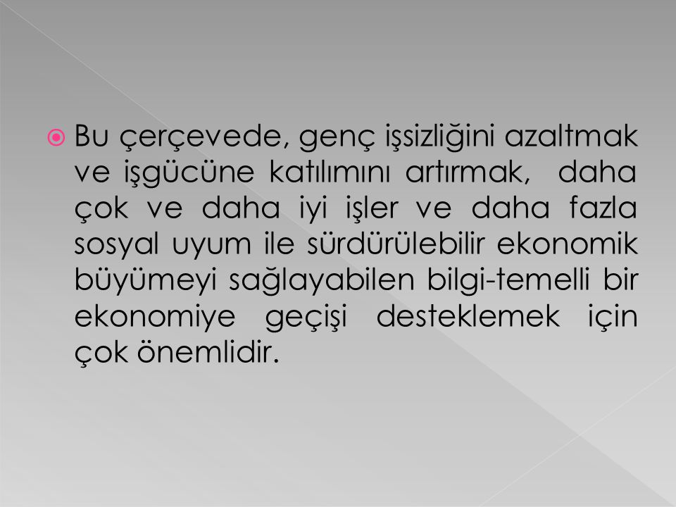  Türkiye İstatistik Kurumu Hane Halkı İşgücü Anketine göre (HİA) (Ocak 2009), genç işsizlik oranı % 27.9 ve tarım dışı genç işsizlik oranı % 31.9 'dur.