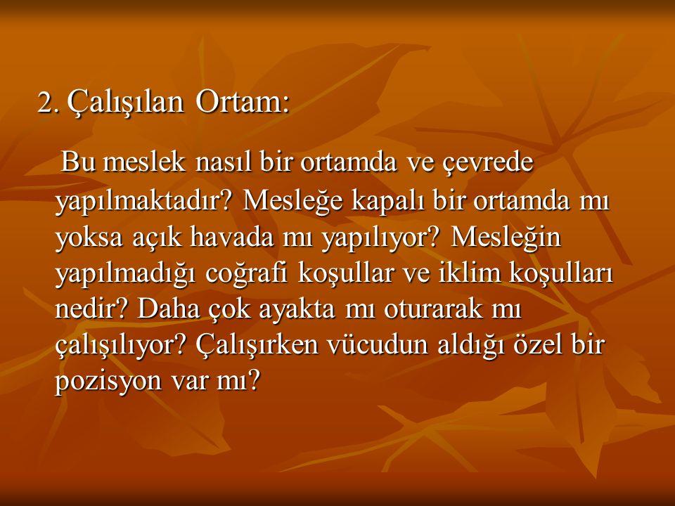 OKUL ÖNCESİNDE MESLEĞE YÖNELTME 4.