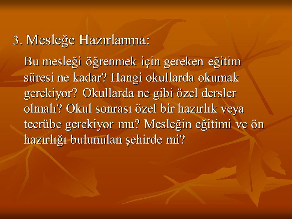 İLKÖĞRETİM BİRİNCİ KADEMEDE MESLEĞE YÖNELTME 1.