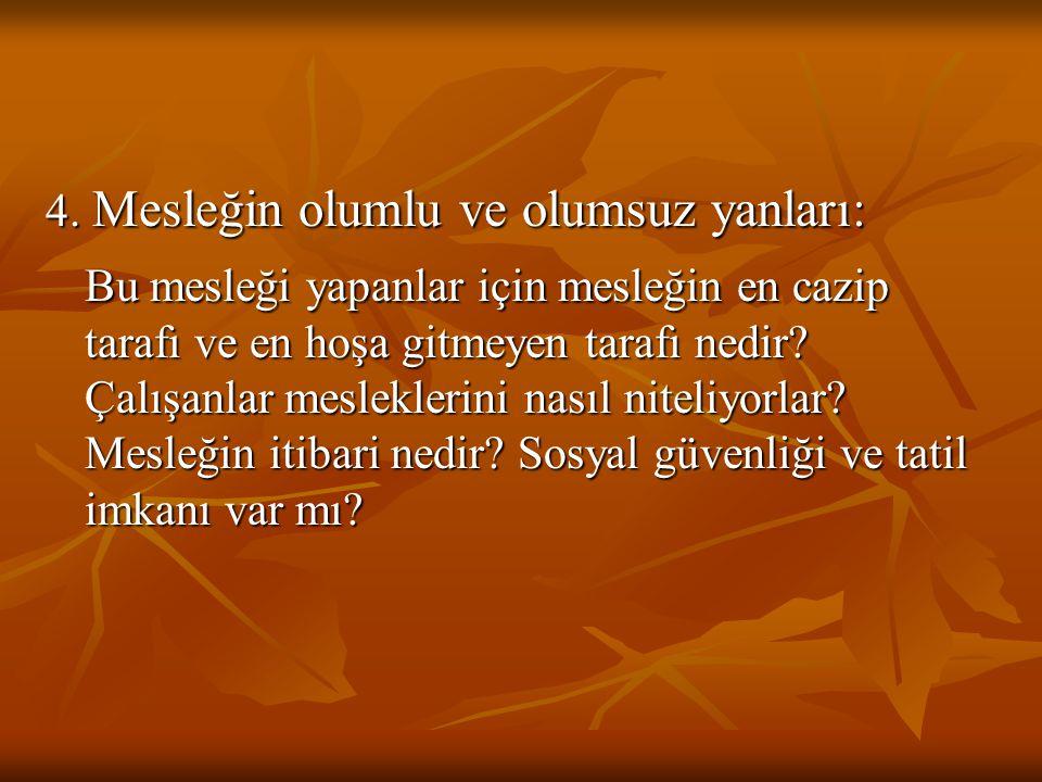 İLKÖĞRETİM BİRİNCİ KADEMEDE MESLEĞE YÖNELTME 4.
