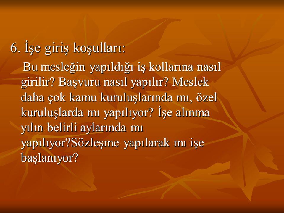İLKÖĞRETİM İKİNCİ KADEMEDE OKULA VE MESLEĞE YÖNELTME 3.