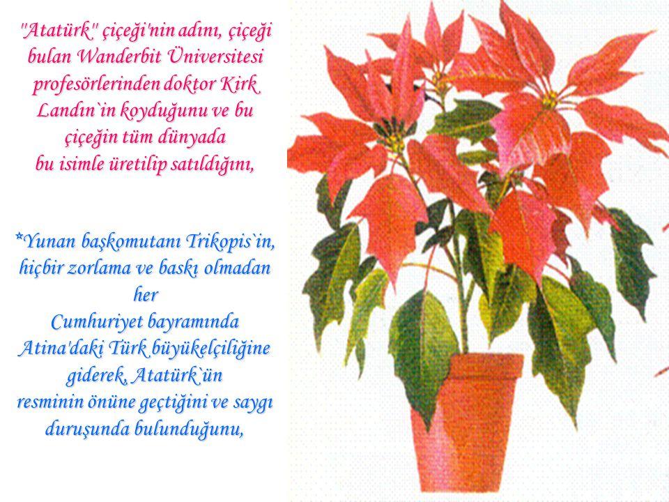 *Atatürk`ün dünyada `başöğretmen' sıfatlı tek lider olduğunu, *Bir geometri kitabı yazdığını, *Üçgen, açı, dikdörtgen gibi ve 48 tane geometri terimin