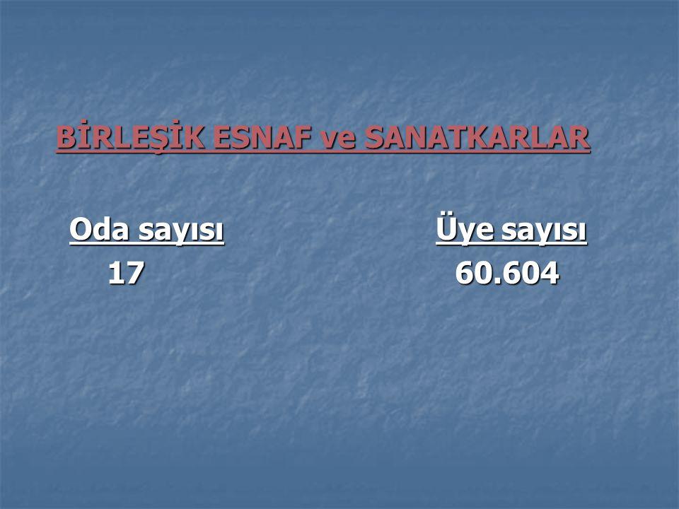 BİRLEŞİK ESNAF ve SANATKARLAR Oda sayısı Üye sayısı Oda sayısı Üye sayısı 17 60.604 17 60.604