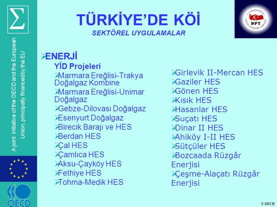 © OECD A joint initiative of the OECD and the European Union, principally financed by the EU 1.Merkezi Birim:  Türkiye'nin KÖİ politikalarını belirleyecek,  KÖİ projelerinin kalkınma planları, program ve sektörel politikalarla uyumunu gözetecek,  KÖİ projelerinin analizi, değerlendirilmesi, önceliklendirmesi, seçimi ve izlenmesinden sorumlu,  KÖİ konusunda uzmanlaşmış,  Uygulayıcı kamu kuruluşları için kaynak niteliği taşıyan rehber ve standart dökümanlar hazırlayacak merkezi bir birimin oluşturulması.