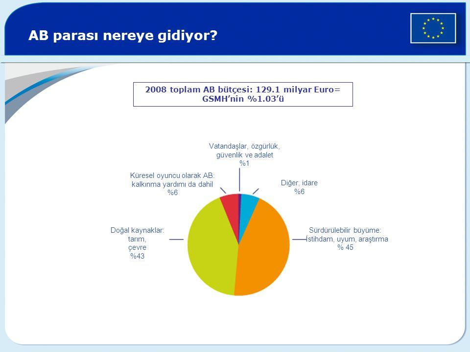 AB parası nereye gidiyor? 2008 toplam AB bütçesi: 129.1 milyar Euro= GSMH'nin %1.03'ü Vatandaşlar, özgürlük, güvenlik ve adalet %1 Diğer, idare %6 Sür