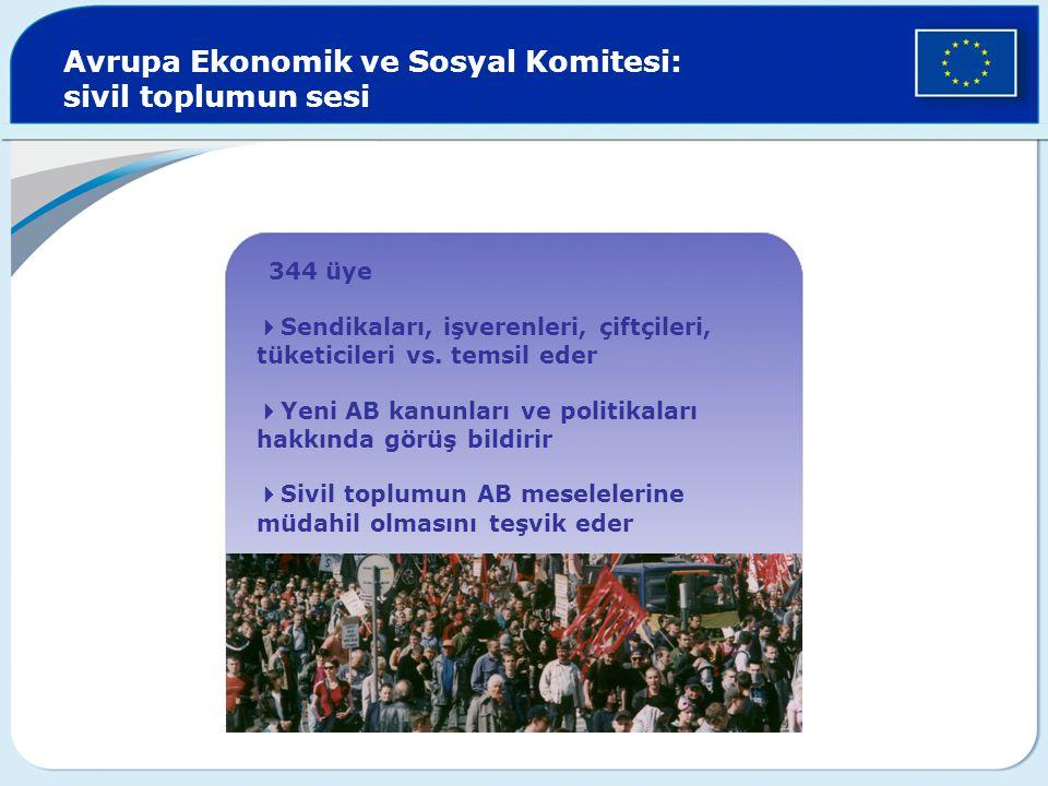 Avrupa Ekonomik ve Sosyal Komitesi: sivil toplumun sesi  344 üye  Sendikaları, işverenleri, çiftçileri, tüketicileri vs. temsil eder  Yeni AB kanun