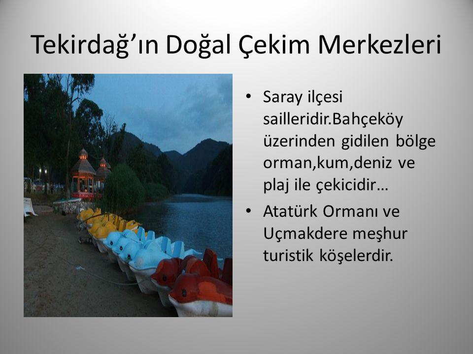 Tekirdağ'ın Doğal Çekim Merkezleri • Saray ilçesi sailleridir.Bahçeköy üzerinden gidilen bölge orman,kum,deniz ve plaj ile çekicidir… • Atatürk Ormanı