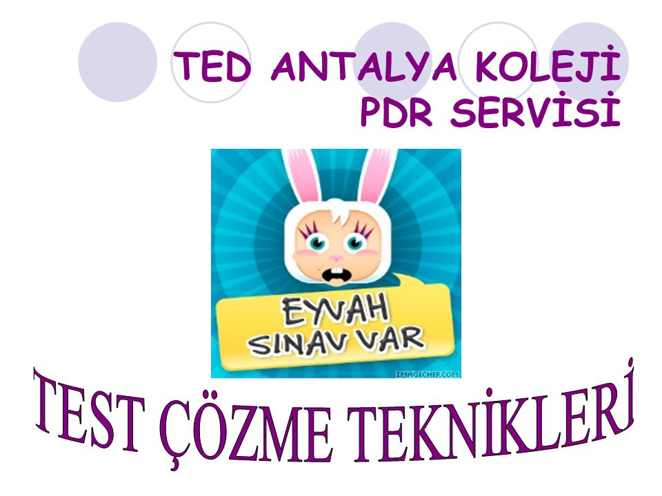 TED ANTALYA KOLEJİ PDR SERVİSİ