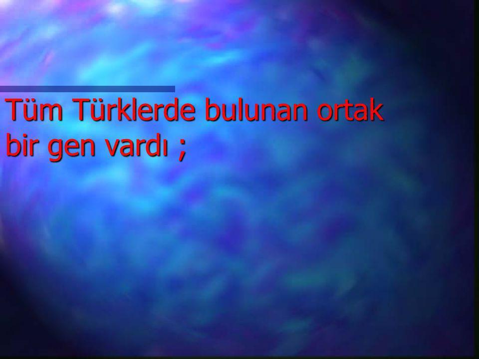 Tüm Türklerde bulunan ortak bir gen vardı ;