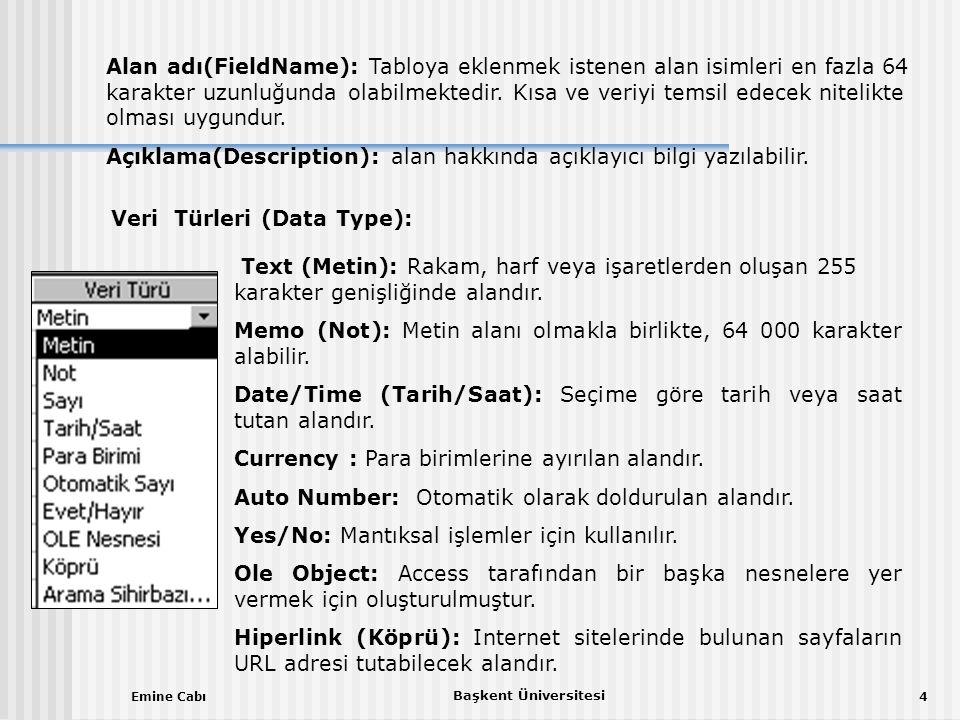 Emine Cabı Başkent Üniversitesi 4 Alan adı(FieldName): Tabloya eklenmek istenen alan isimleri en fazla 64 karakter uzunluğunda olabilmektedir.