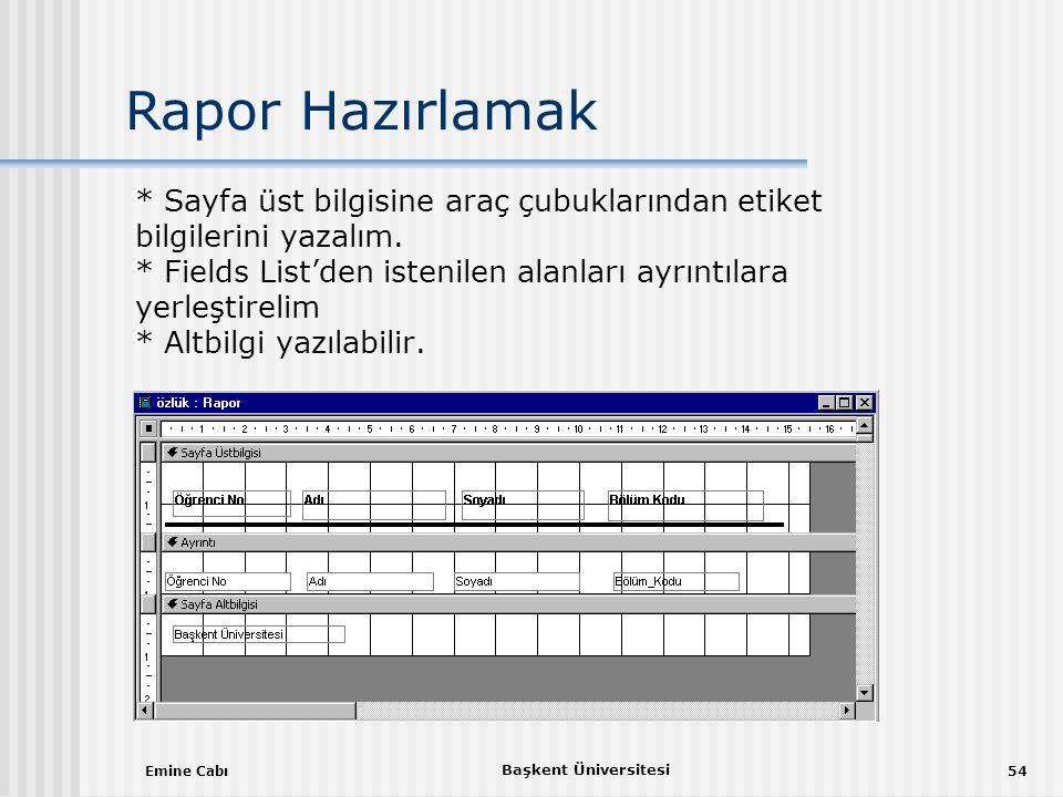 Emine Cabı Başkent Üniversitesi 54 * Sayfa üst bilgisine araç çubuklarından etiket bilgilerini yazalım.