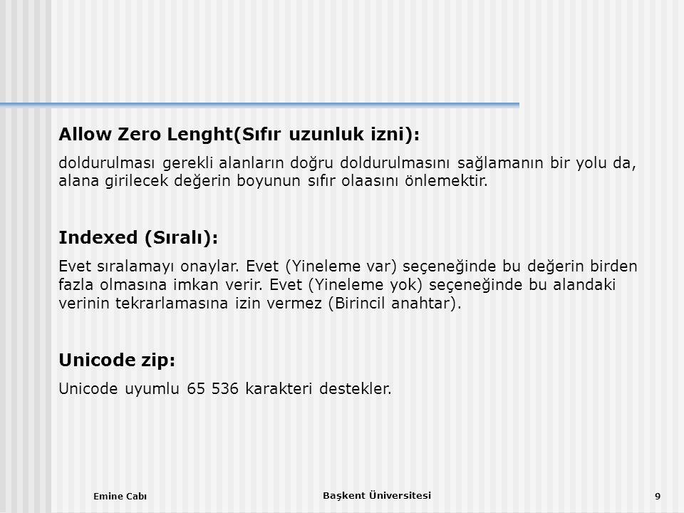 Emine Cabı Başkent Üniversitesi 9 Allow Zero Lenght(Sıfır uzunluk izni): doldurulması gerekli alanların doğru doldurulmasını sağlamanın bir yolu da, alana girilecek değerin boyunun sıfır olaasını önlemektir.