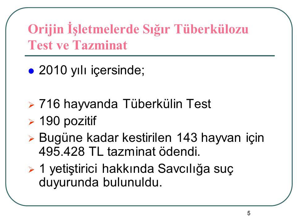 5 Orijin İşletmelerde Sığır Tüberkülozu Test ve Tazminat  2010 yılı içersinde;  716 hayvanda Tüberkülin Test  190 pozitif  Bugüne kadar kestirilen 143 hayvan için 495.428 TL tazminat ödendi.