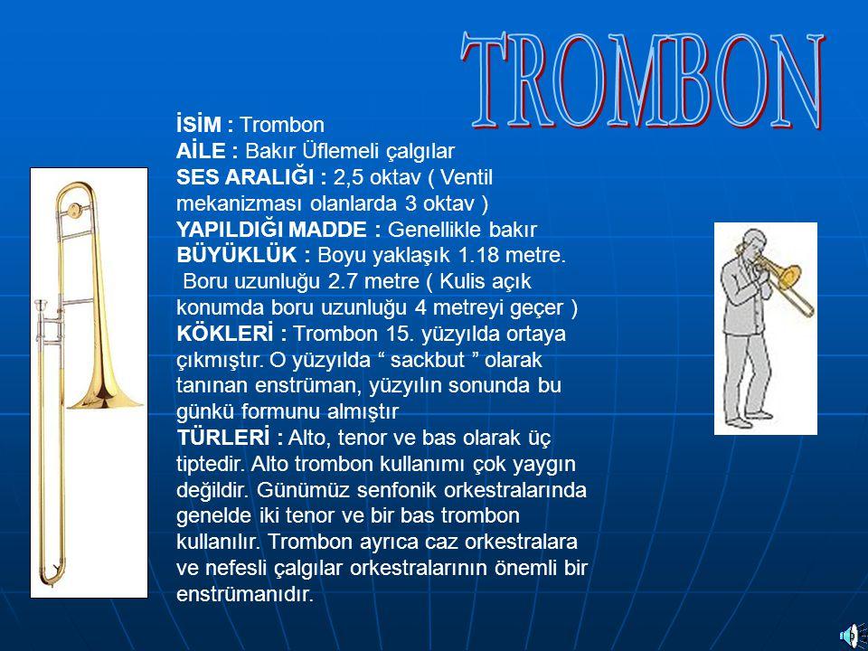 İSİM : Trombon AİLE : Bakır Üflemeli çalgılar SES ARALIĞI : 2,5 oktav ( Ventil mekanizması olanlarda 3 oktav ) YAPILDIĞI MADDE : Genellikle bakır BÜYÜ