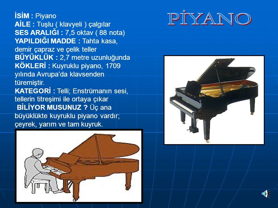 İSİM : Piyano AİLE : Tuşlu ( klavyeli ) çalgılar SES ARALIĞI : 7,5 oktav ( 88 nota) YAPILDIĞI MADDE : Tahta kasa, demir çapraz ve çelik teller BÜYÜKLÜ