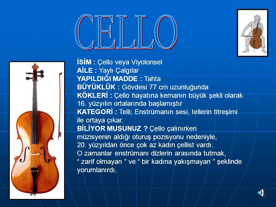 İSİM : Piyano AİLE : Tuşlu ( klavyeli ) çalgılar SES ARALIĞI : 7,5 oktav ( 88 nota) YAPILDIĞI MADDE : Tahta kasa, demir çapraz ve çelik teller BÜYÜKLÜK : 2,7 metre uzunluğunda KÖKLERİ : Kuyruklu piyano, 1709 yılında Avrupa'da klavsenden türemiştir.