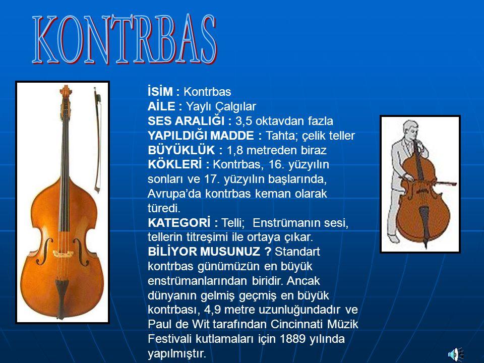 İSİM : Klasik Gitar AİLE : Telli Çalgılar SES ARALIĞI : yaklaşık 3 oktav YAPILDIĞI MADDE : Değişik tahta türlerinin birleşimi BÜYÜKLÜK : Yaklaşık 1 metre uzunluğunda KÖKLERİ : Klasik gitar orta çağda kullanılan Gittern adlı enstrümandan türemiştir.