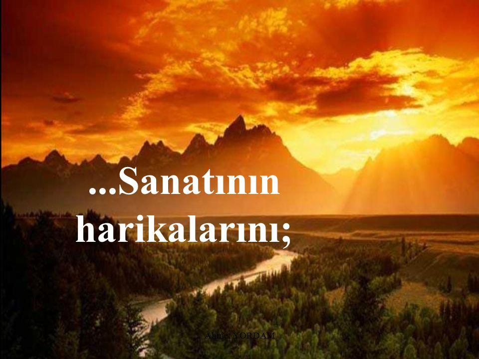 Ahmet YORDAM...Servetinin bolluğunu,