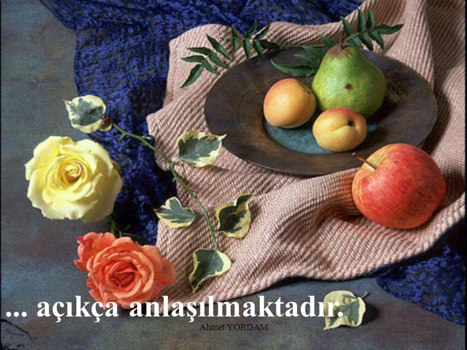 Ahmet YORDAM...Ona ibadet etmekle itaat ettiğini ve sevdiğini bildirmek olduğu...
