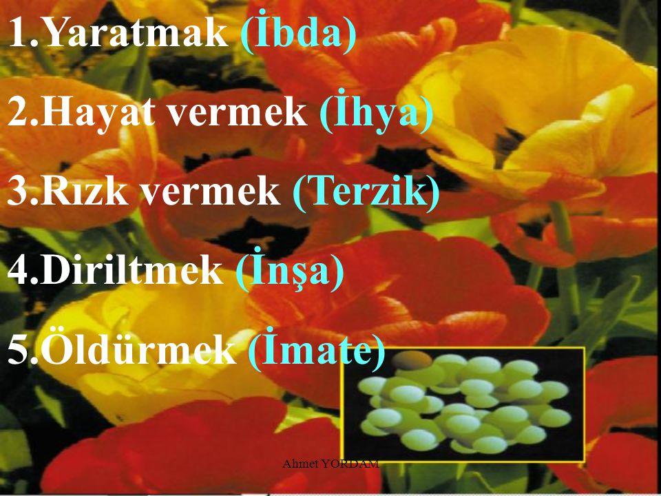 Ahmet YORDAM Tekvin Sıfatının sonucu olarak ortaya çıkan ve yalnızca Allah'a ait olan fiiller şunlardır: