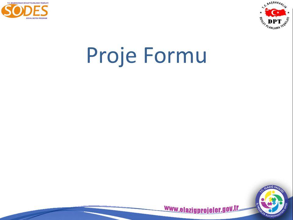 Proje Formu