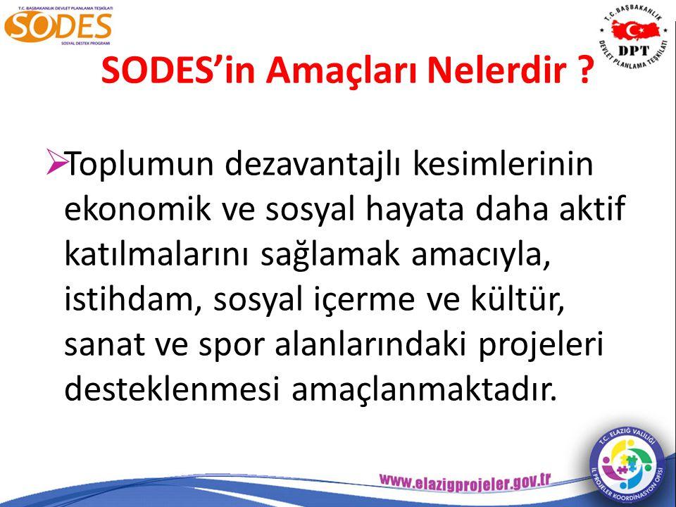 http://online.sodes.gov.tr/sodes/