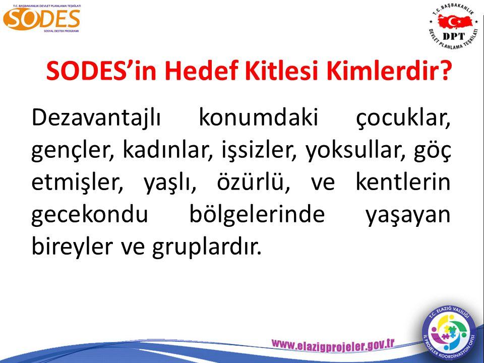 SODES Kapsamında Hangi Proje Türleri Desteklenir.