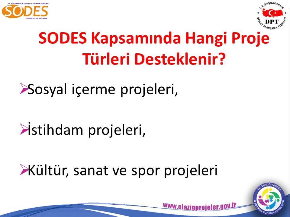 Projelerde koordinatör dışında istihdam edilen ve kamu görevlisi olmayan kişiler ücret alabilir mi.