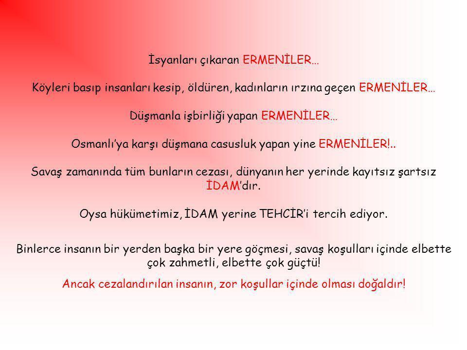 İsyanları çıkaran ERMENİLER… Köyleri basıp insanları kesip, öldüren, kadınların ırzına geçen ERMENİLER… Düşmanla işbirliği yapan ERMENİLER… Osmanlı'ya