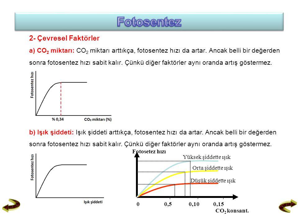2- Çevresel Faktörler a) CO 2 miktarı: CO 2 miktarı arttıkça, fotosentez hızı da artar. Ancak belli bir değerden sonra fotosentez hızı sabit kalır. Çü