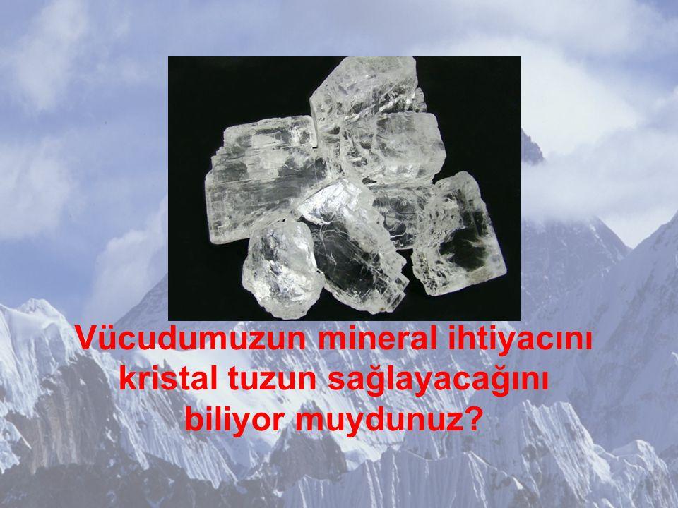 Vücudumuzun mineral ihtiyacını kristal tuzun sağlayacağını biliyor muydunuz?