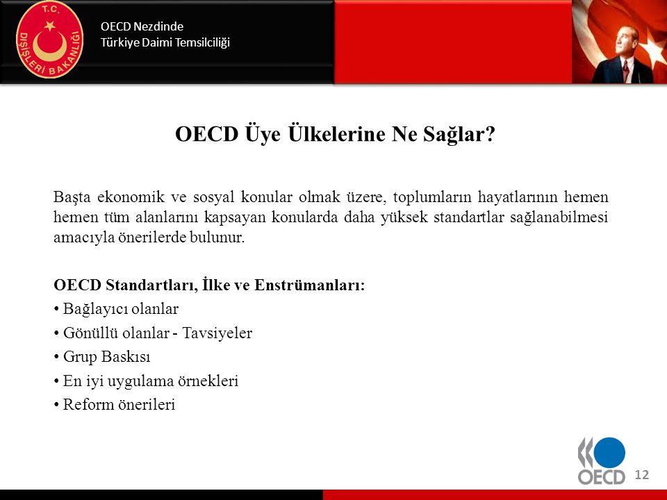 OECD Üye Ülkelerine Ne Sağlar? Başta ekonomik ve sosyal konular olmak üzere, toplumların hayatlarının hemen hemen tüm alanlarını kapsayan konularda da