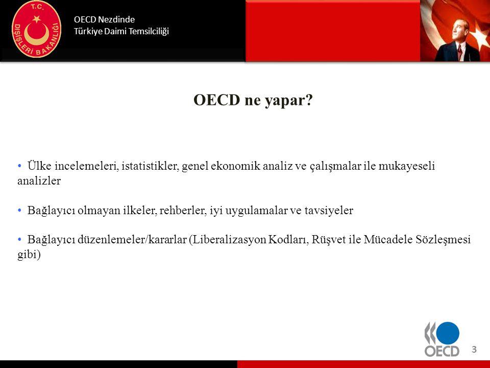 OECD ne yapar? OECD Nezdinde Türkiye Daimi Temsilciliği • Ülke incelemeleri, istatistikler, genel ekonomik analiz ve çalışmalar ile mukayeseli analizl