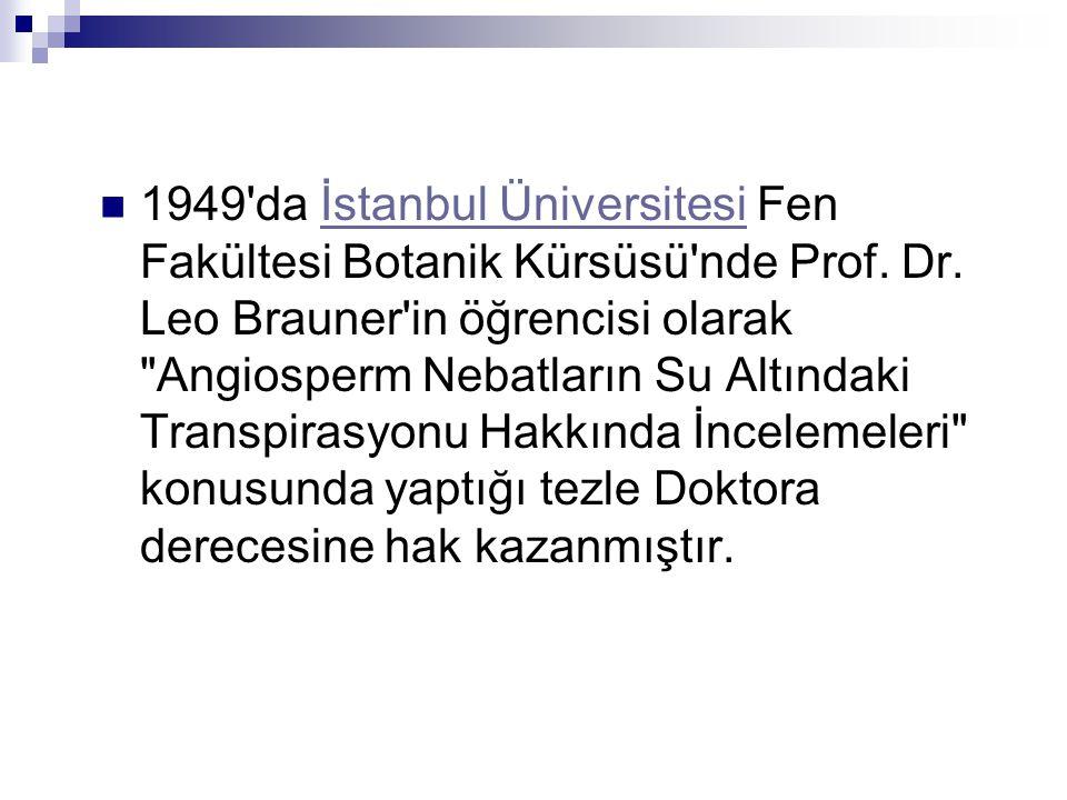  1949 da İstanbul Üniversitesi Fen Fakültesi Botanik Kürsüsü nde Prof.