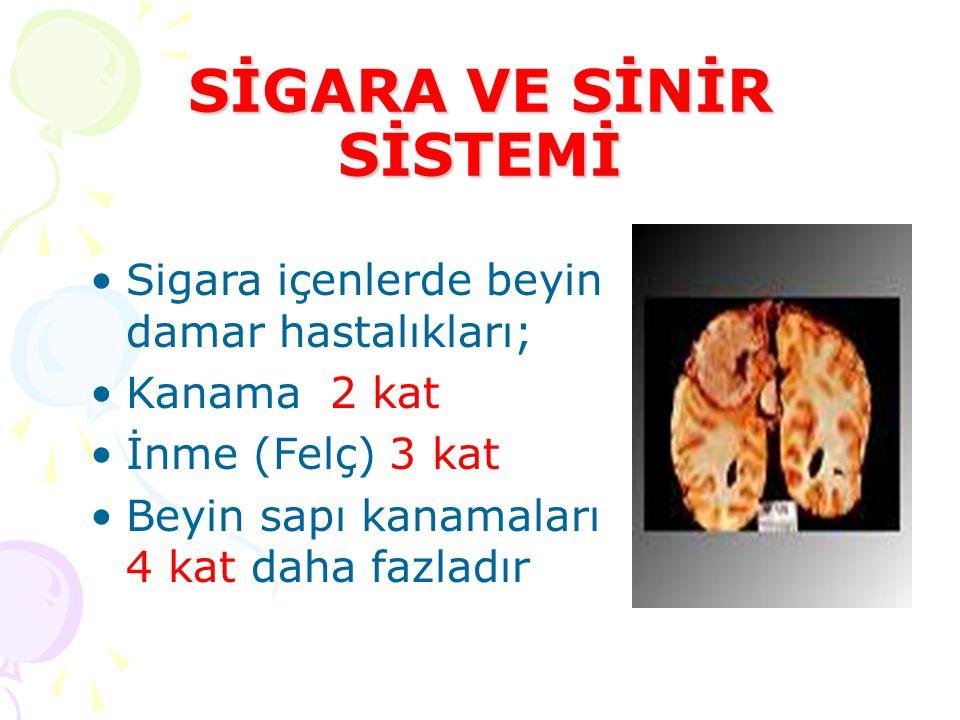 SİGARA VE SİNİR SİSTEMİ •Sigara içenlerde beyin damar hastalıkları; •Kanama 2 kat •İnme (Felç) 3 kat •Beyin sapı kanamaları 4 kat daha fazladır