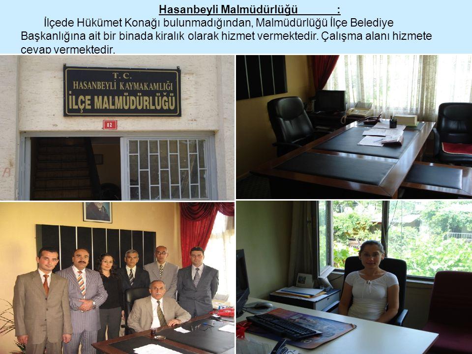 Hasanbeyli Malmüdürlüğü : İlçede Hükümet Konağı bulunmadığından, Malmüdürlüğü İlçe Belediye Başkanlığına ait bir binada kiralık olarak hizmet vermekte