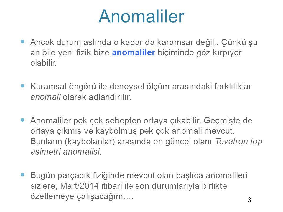 Muon Anomalous Magnetic Moment (g-2) Anomalisi