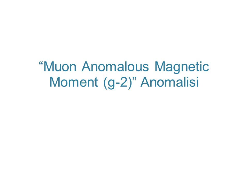 Muon Anomalous Magnetic Moment (g-2) Anomalisi