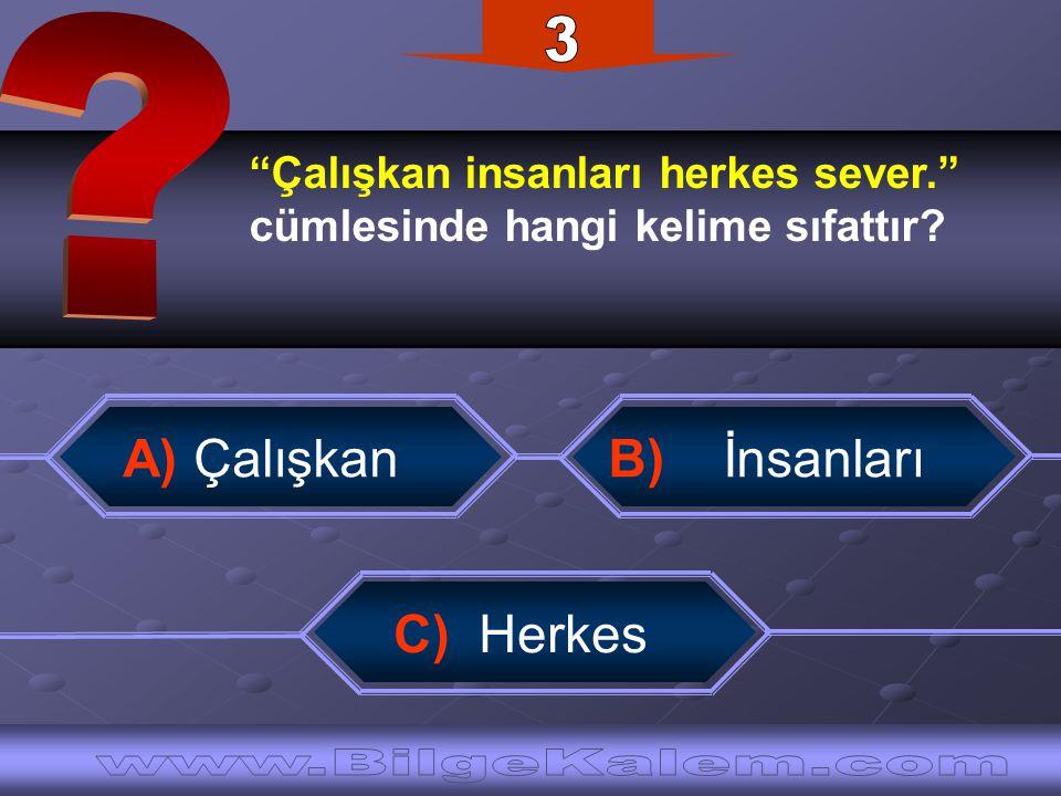 Aşağıdaki cümlelerden hangisinde işaret zamiri kullanılmıştır.
