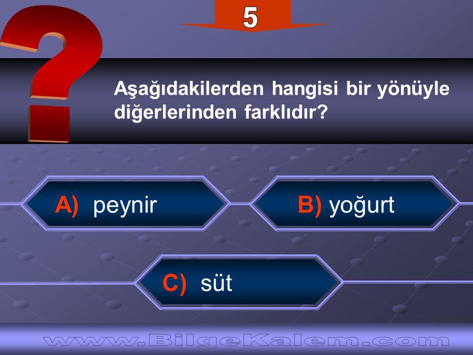 Aşağıdakilerden hangisi bir yönüyle diğerlerinden farklıdır? A) peynir B) yoğurt C) süt