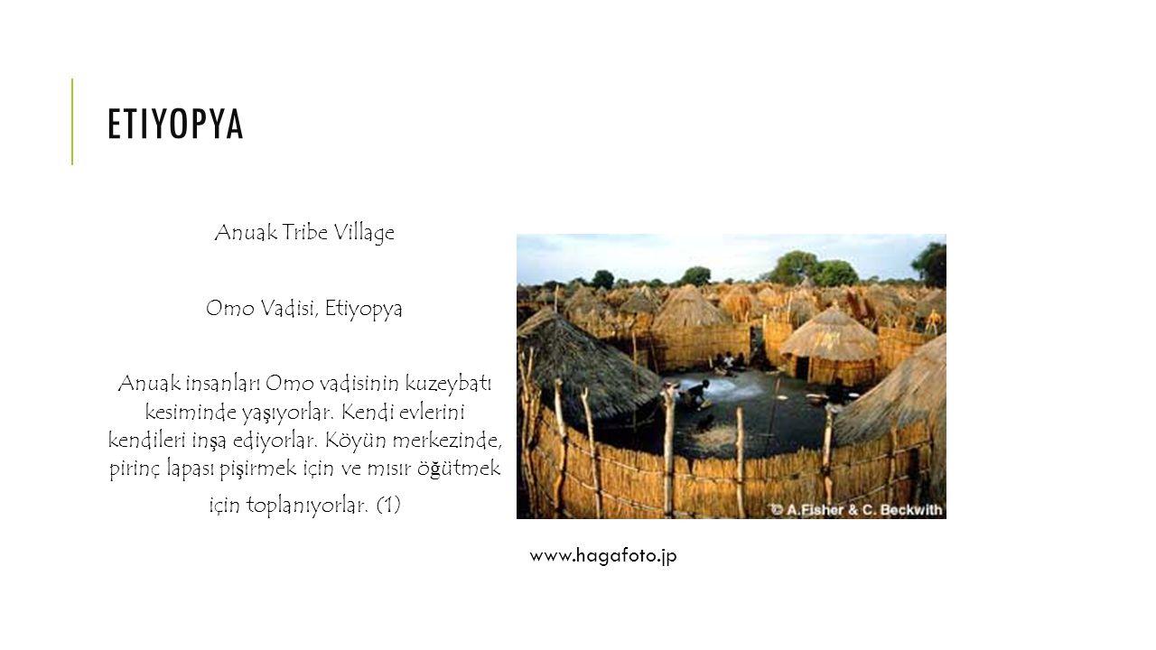 ERITRE Atr Tribe Nomad Kubbe ş eklindeki Evi Eritre Afar insanları, Büyük Rift Vadisi nde ya ş ayan göçebe insanlardır.