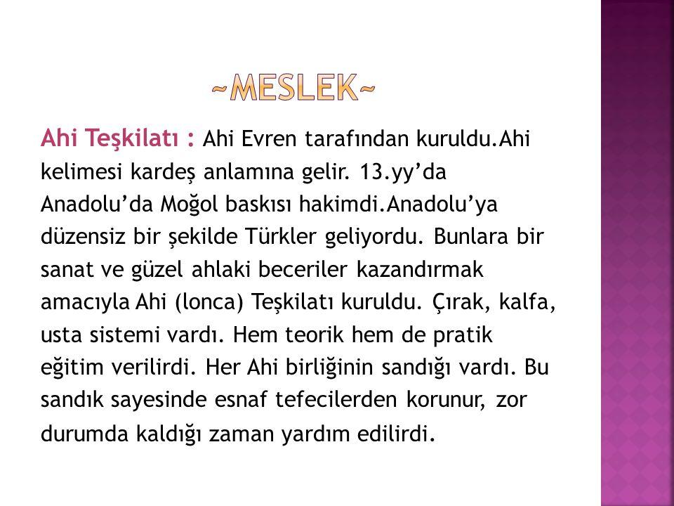 Ahi Teşkilatı : Ahi Evren tarafından kuruldu.Ahi kelimesi kardeş anlamına gelir. 13.yy'da Anadolu'da Moğol baskısı hakimdi.Anadolu'ya düzensiz bir şek