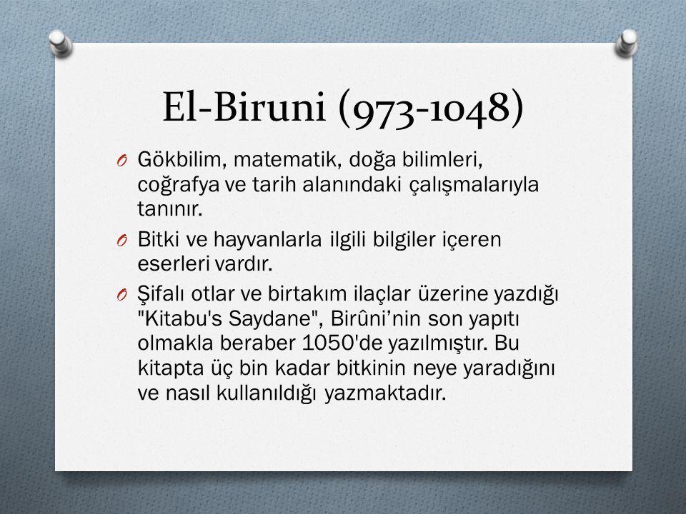 El-Biruni (973-1048) O Gökbilim, matematik, doğa bilimleri, coğrafya ve tarih alanındaki çalışmalarıyla tanınır. O Bitki ve hayvanlarla ilgili bilgile
