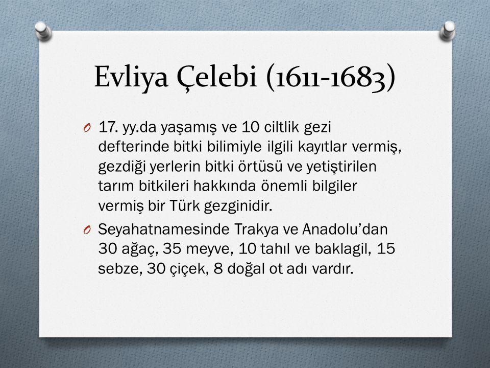 Evliya Çelebi (1611-1683) O 17. yy.da yaşamış ve 10 ciltlik gezi defterinde bitki bilimiyle ilgili kayıtlar vermiş, gezdiği yerlerin bitki örtüsü ve y