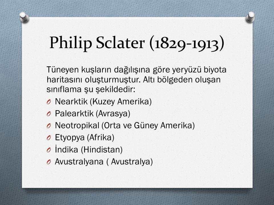 Philip Sclater (1829-1913) Tüneyen kuşların dağılışına göre yeryüzü biyota haritasını oluşturmuştur. Altı bölgeden oluşan sınıflama şu şekildedir: O N