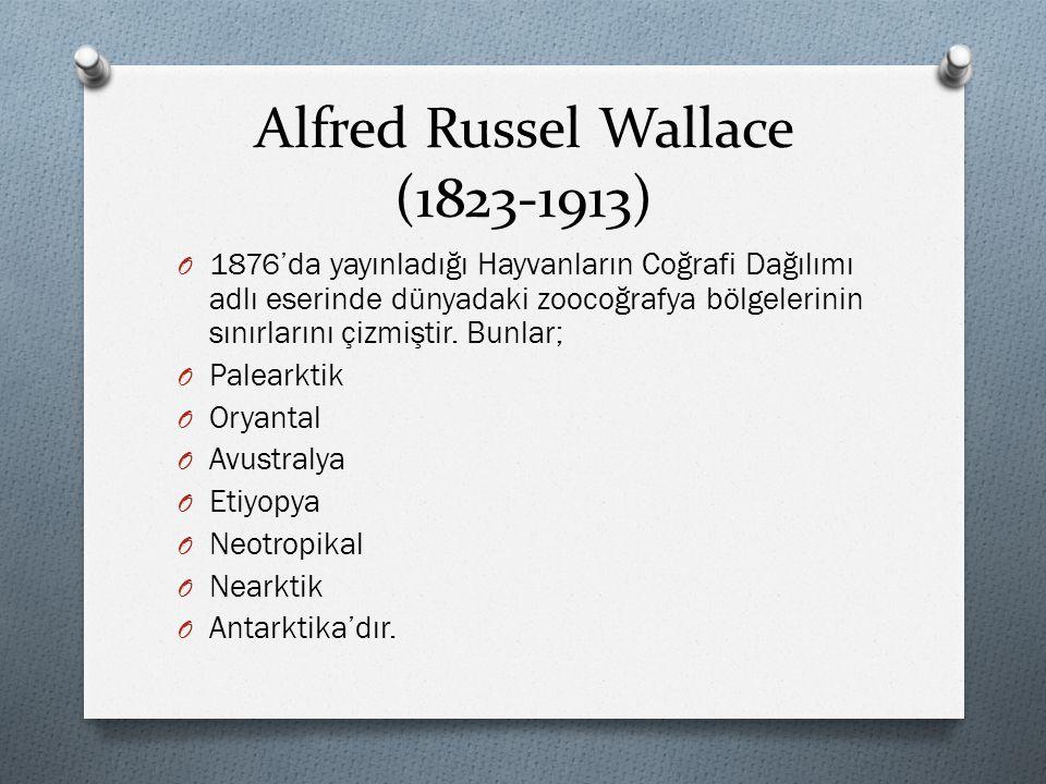Alfred Russel Wallace (1823-1913) O 1876'da yayınladığı Hayvanların Coğrafi Dağılımı adlı eserinde dünyadaki zoocoğrafya bölgelerinin sınırlarını çizm