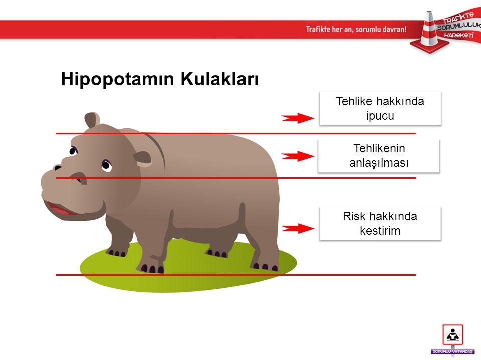 Hipopotamın Kulakları Tehlike hakkında ipucu Tehlikenin anlaşılması Risk hakkında kestirim