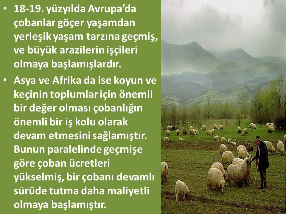 • 18-19. yüzyılda Avrupa'da çobanlar göçer yaşamdan yerleşik yaşam tarzına geçmiş, ve büyük arazilerin işçileri olmaya başlamışlardır. • Asya ve Afrik