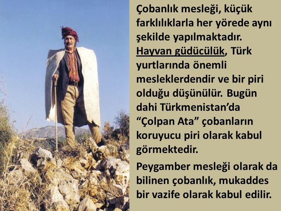 • Çobanlık mesleği, küçük farklılıklarla her yörede aynı şekilde yapılmaktadır. Hayvan güdücülük, Türk yurtlarında önemli mesleklerdendir ve bir piri